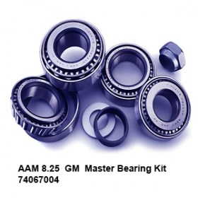 AAM 8.25  GM  Master Bearing Kit 74067004.jpg  8