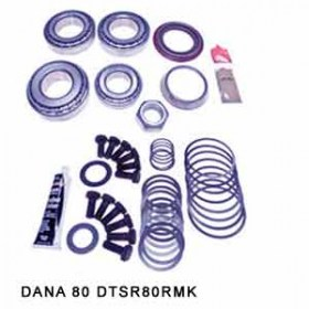 Bearing-Overhaul-Kit-DANA-80-DTSR80RMK