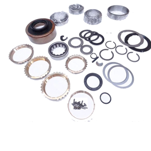 Borg Warner T5 Overhaul Kit with Rings Blazer S Series DTSBK107WS6