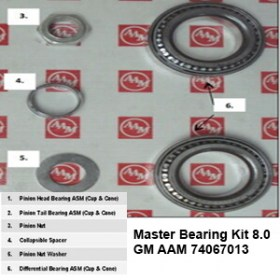 Master Bearing Kit 8.0 GM AAM 740670138
