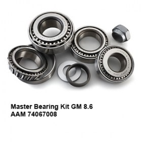 Master Bearing Kit GM 8.6 AAM 740670086