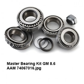 Master Bearing Kit GM 8.6 AAM 740670164