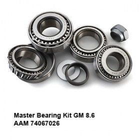Master Bearing Kit GM 8.6 AAM 740670265