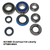 NV1500 Overhaul Kit Liberty DTSBK494A.jpeg