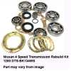 Nissan 4 Speed Transmission Rebuild Kit 1200 DTS-BK134WS.jpeg