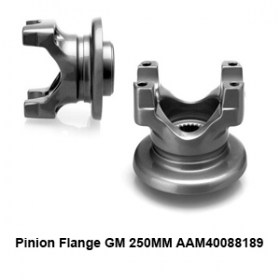 Pinion Flange GM 250MM AAM400881893