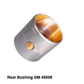 Rear Bushing GM 45008