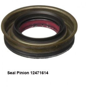 Seal Pinion 124716147