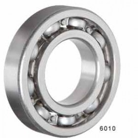 Trans_Case_NP263_Bearing_6010